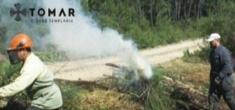 Limpeza da floresta contra incêndios – saiba quais as suas obrigações